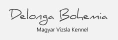 CHS Delonga Bohemia